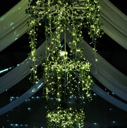 Aberdeenshire Rustic Wedding Venue