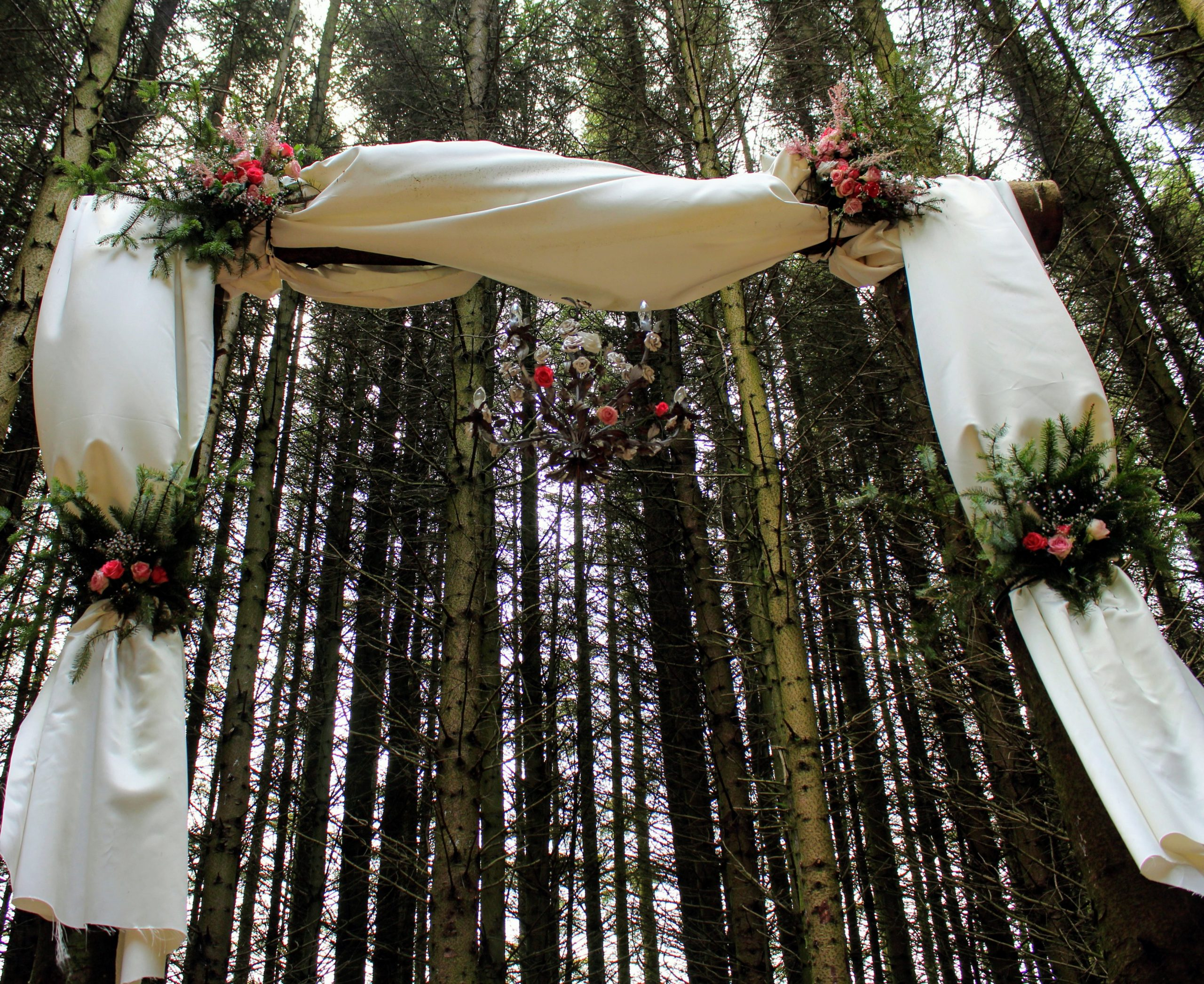 Stunning 3m tall solid log arch in our woodland wedding cathedral decorated with ivory satin drapes, greenery and pink roses