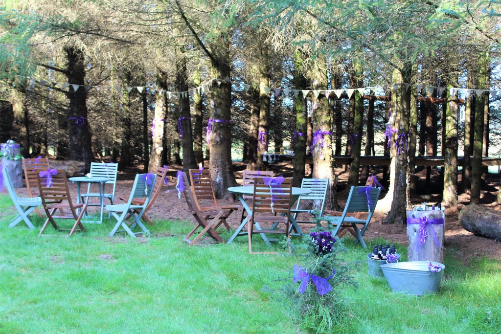 Drinks reception area nestled in the woods