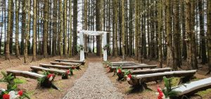 woodland cathedral solid log arch with drapes